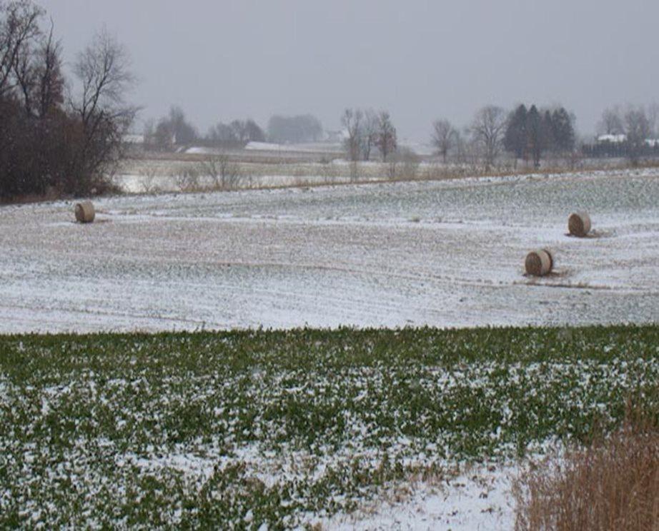 Winter farm scene with hay bales.